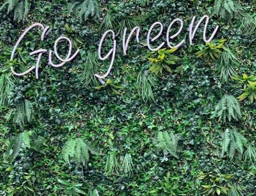 Why We Need to Go Green